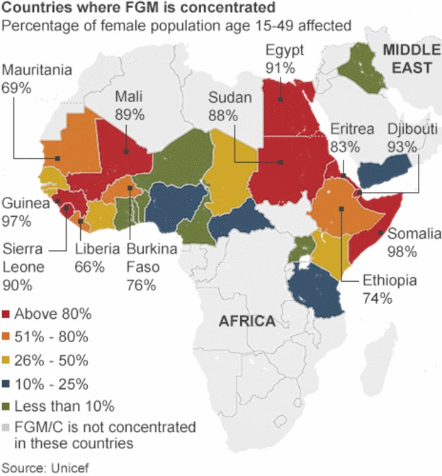 an analysis of female genital mutilation in africa Female genital mutilation in africa: analysis of current abandonment approaches female genital mutilation in africa: analysis of current abandonment approaches.