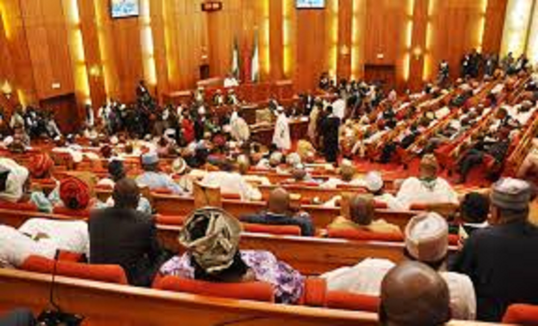 Senate orders Ministry of Finance, Customs to suspend ban on car importation through land borders