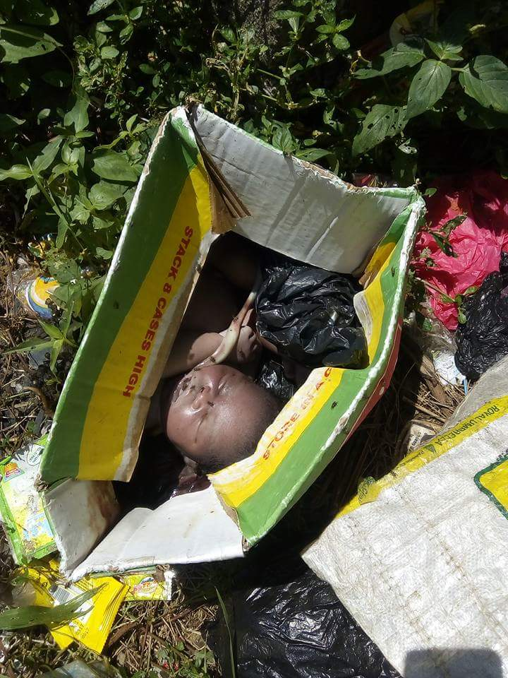 The abandonment of newborn babies in Nigeria is an ...