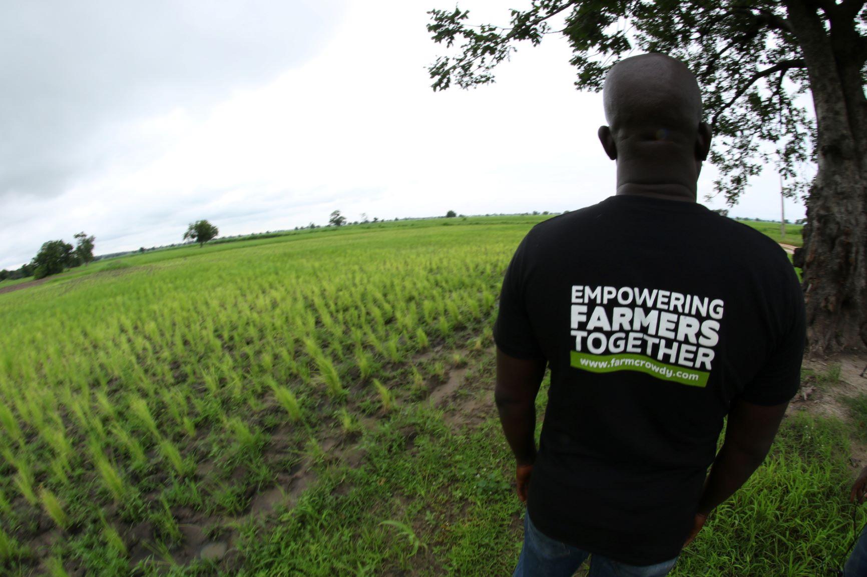 New Farmcrowdy partnership to boost livestock trading in Nigeria