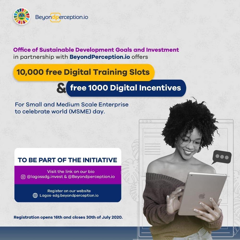 Lagos State Sdg Beyond Perception Free Digital Training Programme For 10 000 Sme Businesses Ventures Africa