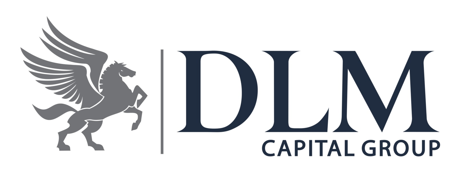 DLM Capital Group to Tap into Nigeria's Fintech Opportunity, Acquires MFB  License - Ventures Africa